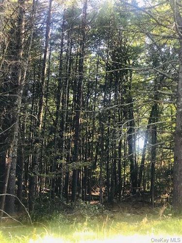 Tiny photo for Lakeview Drive Road, Highland Lake, NY 12743 (MLS # H6069204)