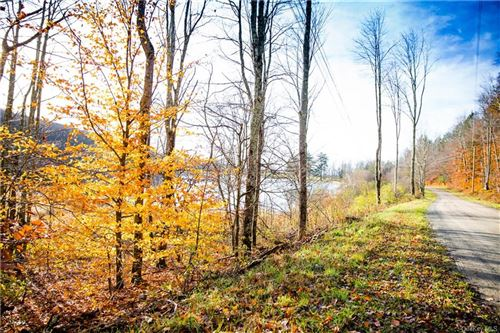 Tiny photo for William Brown Road, Hankins, NY 12736 (MLS # H6081205)