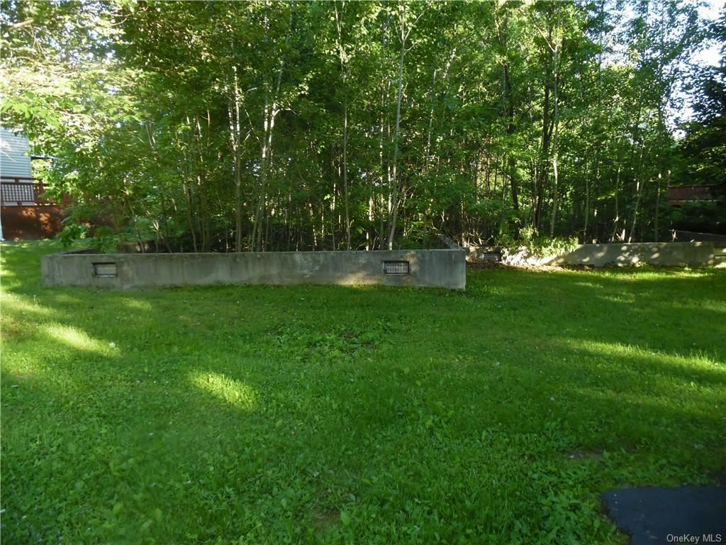 Photo for 51 Clearwater Drive, Monticello, NY 12701 (MLS # H6048231)