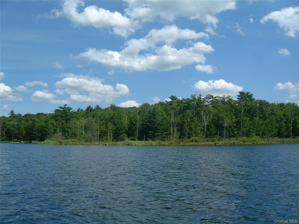 Photo for York Lake Estates Road, Barryville, NY 12719 (MLS # H6052241)