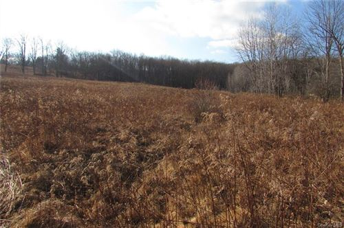 Photo of 0 Old Route 17, Harris, NY 12742 (MLS # H6113247)