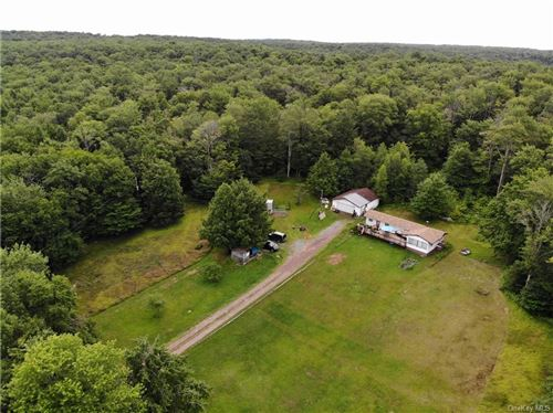 Photo of 480 Breezy Hill Road, Parksville, NY 12768 (MLS # H6051263)
