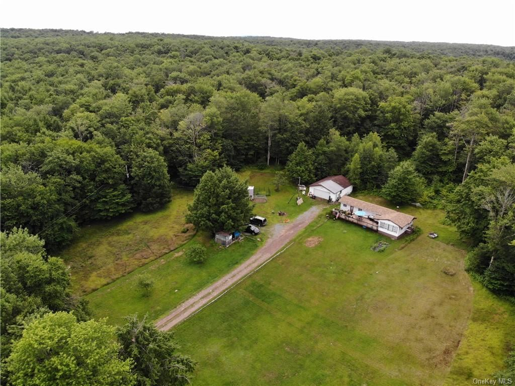 Photo for 480 Breezy Hill Road, Parksville, NY 12768 (MLS # H6051263)