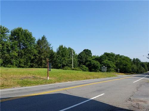 Tiny photo for Rt 55 And Horseshoe Lake Road, Kauneonga Lake, NY 12749 (MLS # H6112271)