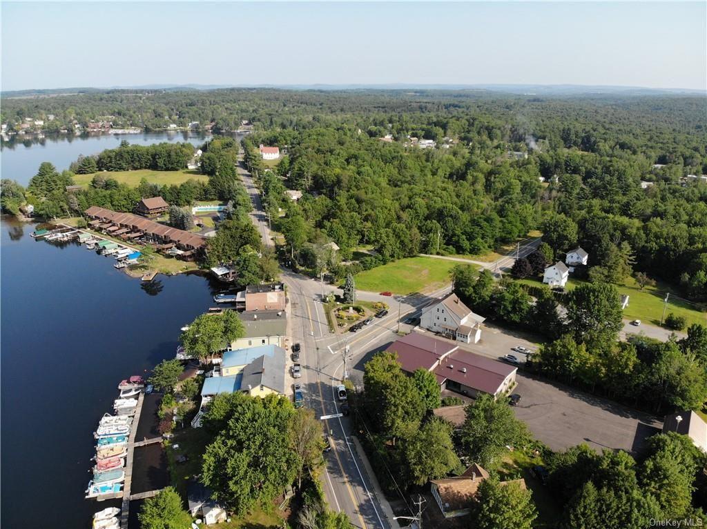 Photo for Rt 55 And Horseshoe Lake Road, Kauneonga Lake, NY 12749 (MLS # H6112271)