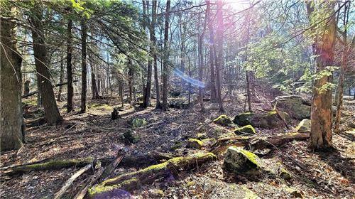 Tiny photo for Roslyn Ridge Road, Mongaup Valley, NY 12762 (MLS # H6105283)