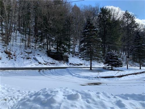 Tiny photo for 1360 Gulf Road, Callicoon Center, NY 12724 (MLS # H6094292)
