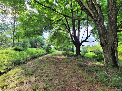 Tiny photo for *00* Mitchell Road, White Lake, NY 12786 (MLS # H6065293)
