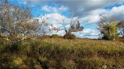 Tiny photo for 276 Breezy Hill Road, Parksville, NY 12768 (MLS # H6076313)