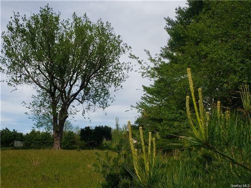 Photo of Mud Pond Road, Highland Lake, NY 12743 (MLS # H6094316)