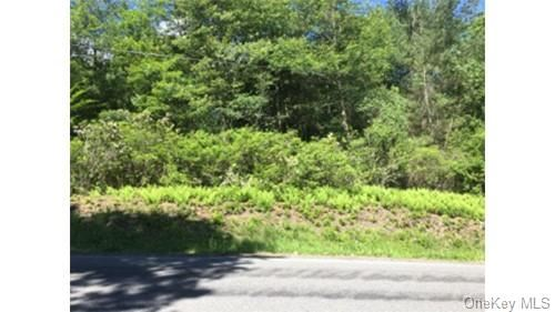 Tiny photo for Lot 11.29 Hilltop Road, Monticello, NY 12701 (MLS # H6086358)