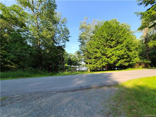 Tiny photo for ** Jaketown Road, Bethel, NY 12720 (MLS # H6052360)