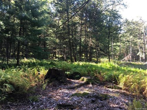 Tiny photo for S Maplewood Road, Monticello, NY 12701 (MLS # H6051403)