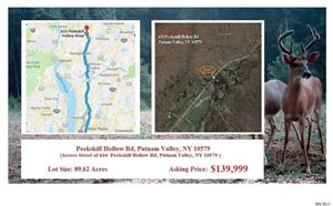 Photo of Peekskill Hollow, Out Of Area Town, NY 10579 (MLS # 3137409)