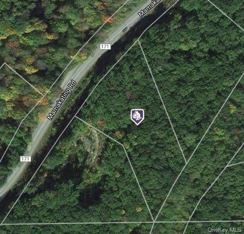 Photo of Mamakating Road, Wurtsboro, NY 12790 (MLS # H6125418)