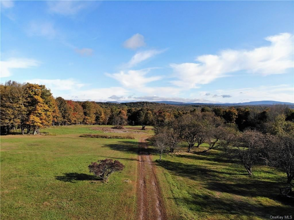 Photo for *00* Bowers Road, Hurleyville, NY 12747 (MLS # H6075434)