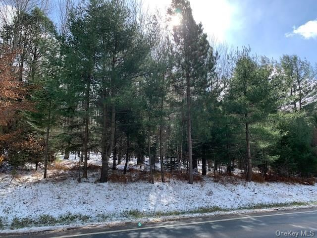 Photo for State Route 55, Neversink, NY 12765 (MLS # H6080455)