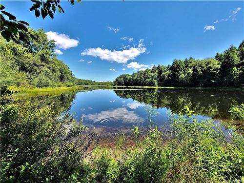 Photo of Beaver Lake Road, Livingston Manor, NY 12758 (MLS # H6060478)