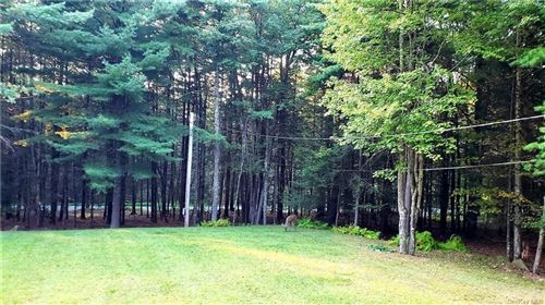 Tiny photo for 57 Rod And Gun Club Road, Monticello, NY 12777 (MLS # H6084488)