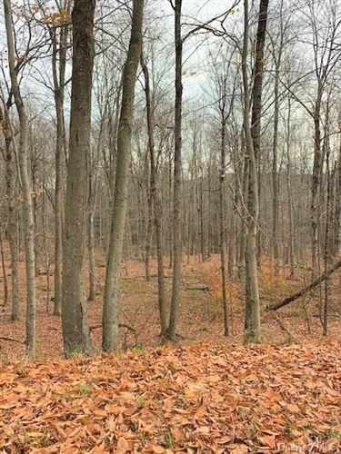 Tiny photo for Tennanah Lake Rd, Roscoe, NY 12736 (MLS # H6081504)