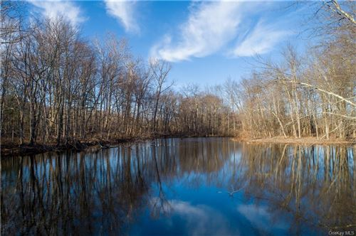 Photo of 00 Traver Road, Pleasant Valley, NY 12569 (MLS # H6086521)