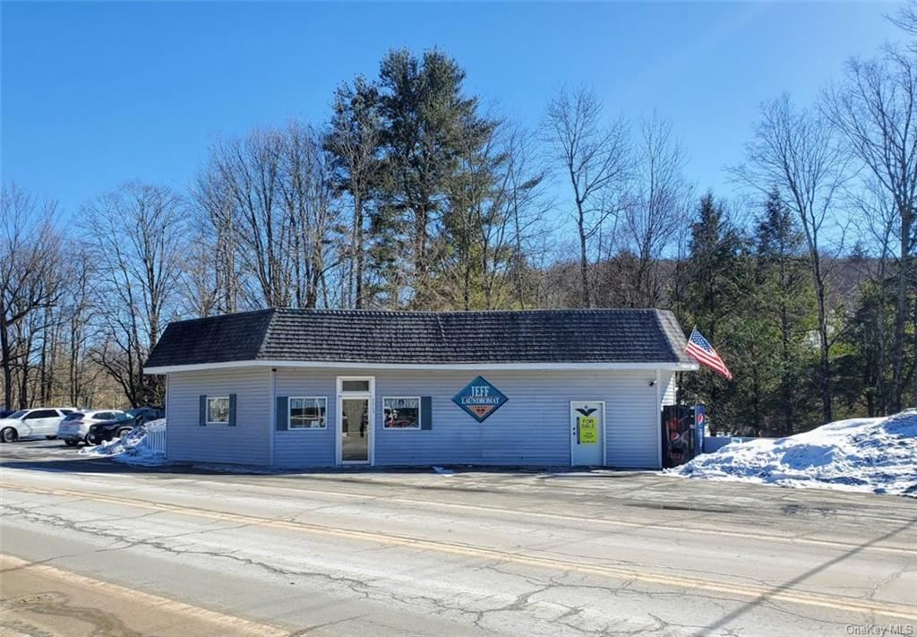 Photo for 4869 State Route 52, Jeffersonville, NY 12748 (MLS # H6099537)