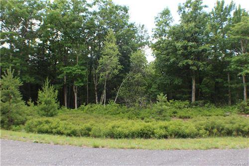Tiny photo for Big Rock Drive, Wurtsboro, NY 12790 (MLS # H6048538)