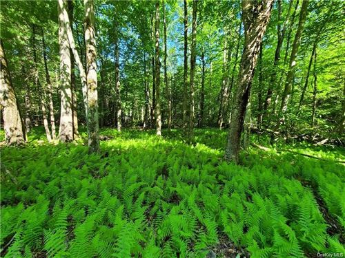Photo of Brown Road, Wawarsing, NY 12489 (MLS # H6093539)