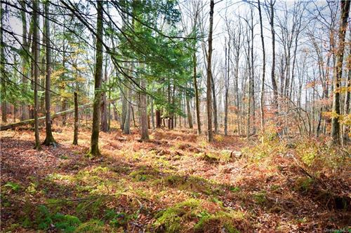Tiny photo for Coopers Corners Road, Monticello, NY 12701 (MLS # H6081570)