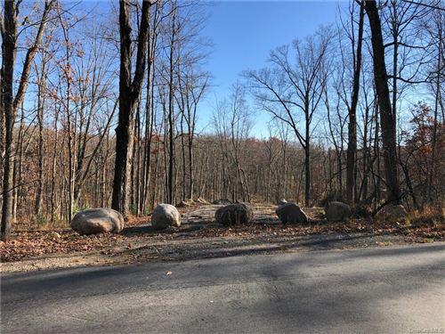 Photo of Roosa Gap Lot 1 Road, Wurtsboro, NY 12790 (MLS # H6081582)