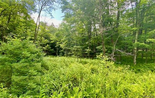 Photo of 114 Renner Road, Mountain Dale, NY 12763 (MLS # H6071585)
