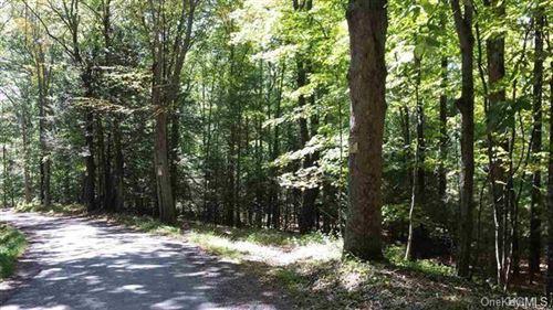Tiny photo for Tempaloni Road, Wurtsboro, NY 12790 (MLS # H6106586)