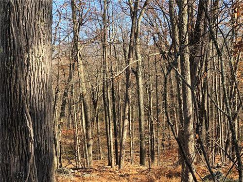 Tiny photo for Roosa Gap Lot 2 Road, Wurtsboro, NY 12790 (MLS # H6081588)