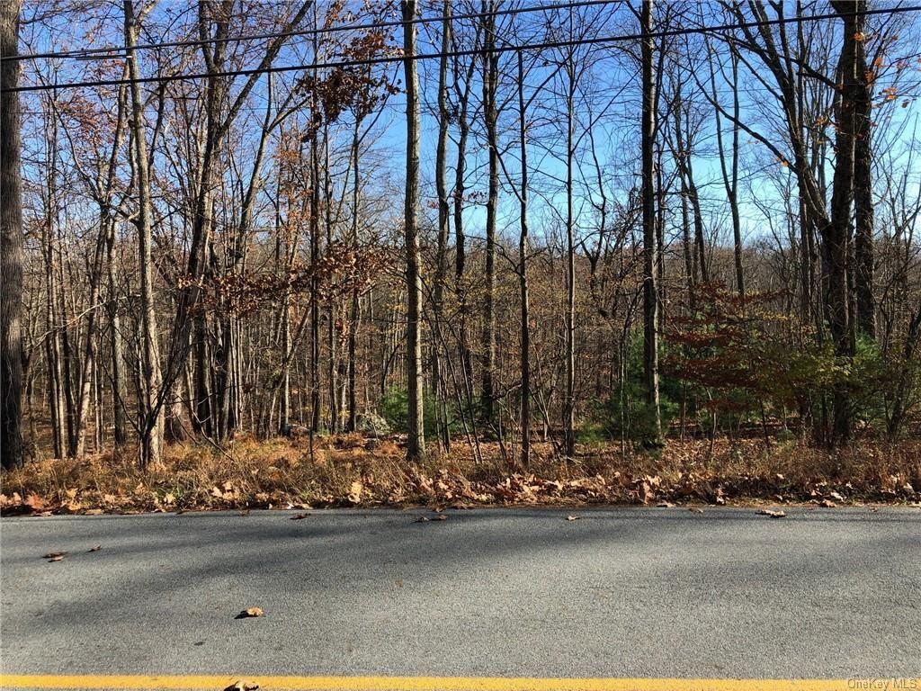 Photo for Roosa Gap Lot 2 Road, Wurtsboro, NY 12790 (MLS # H6081588)