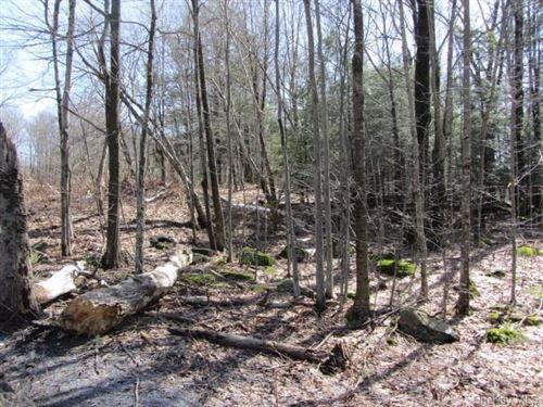 Photo of Big Woods Road, Harris, NY 12742 (MLS # H6103593)