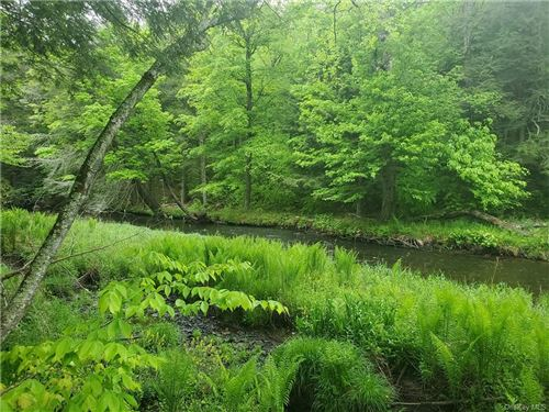 Photo of *** Creamery Road Tr 20, Mongaup Valley, NY 12762 (MLS # H6043621)
