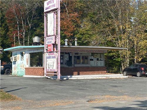 Photo of 3407 Nys Hwy 55, Bethel, NY 12720 (MLS # H6077622)