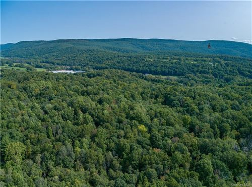 Photo of Route 22, Wingdale, NY 12522 (MLS # H6076644)