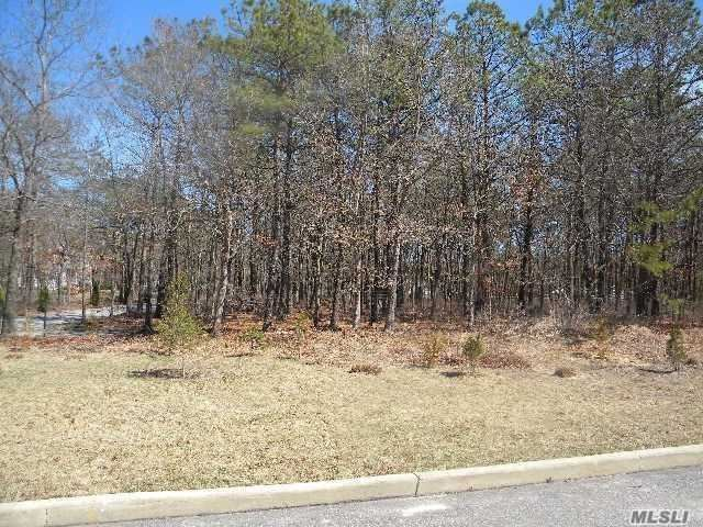 Photo of 221A Silas Carter Road, Manorville, NY 11949 (MLS # 3255651)