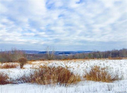 Photo of 430 Stump Pond Road, Livingston Manor, NY 12758 (MLS # H6089662)