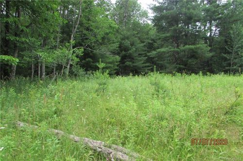 Tiny photo for Church Street, Fallsburg, NY 12733 (MLS # H6047703)