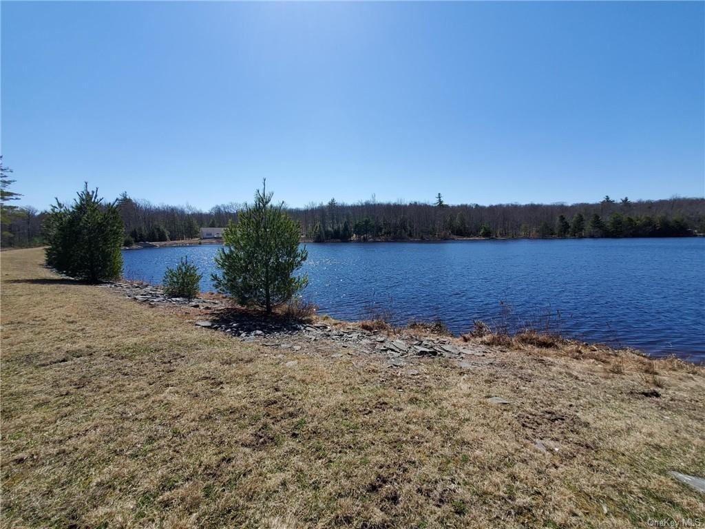 Photo for Pine Lake Drive, Wurtsboro, NY 12790 (MLS # H6105703)