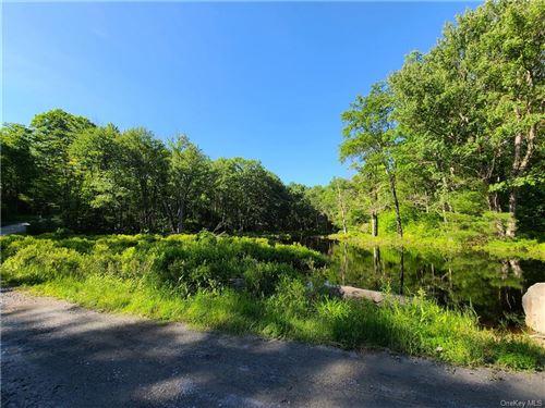 Photo of ** Chapin Trail, Bethel, NY 12720 (MLS # H6047708)