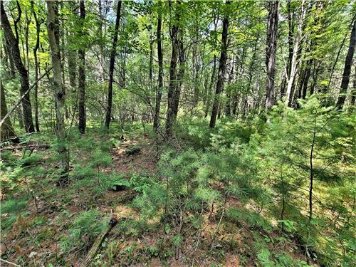Tiny photo for Lot 17 Lemons Brook Road, White Lake, NY 12786 (MLS # H6055724)