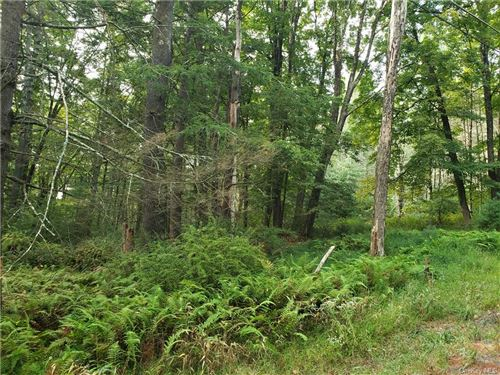 Tiny photo for Forestburgh Road, Forestburgh, NY 12777 (MLS # H6069729)