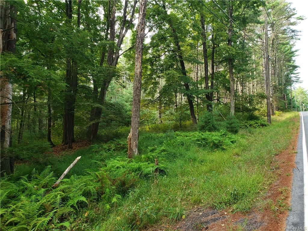 Photo for Forestburgh Road, Forestburgh, NY 12777 (MLS # H6069729)