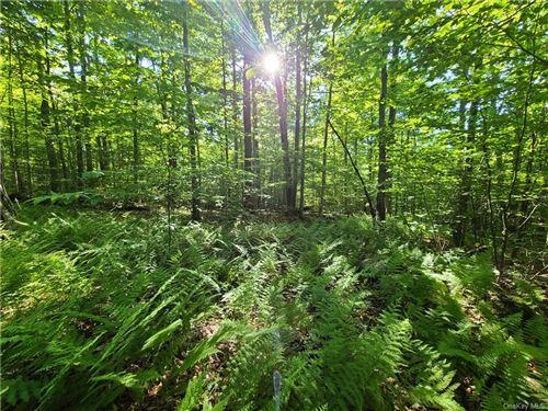 Tiny photo for Pine Grove And Markley Lane, Bethel, NY 12720 (MLS # H6047761)