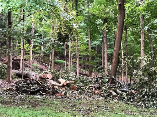 Photo of Route 9, Cold Spring, NY 10516 (MLS # H6149764)