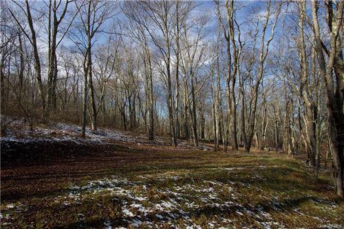Tiny photo for 11.-2-11 Benton Hollow Road W, Livingston Manor, NY 12758 (MLS # H6085765)