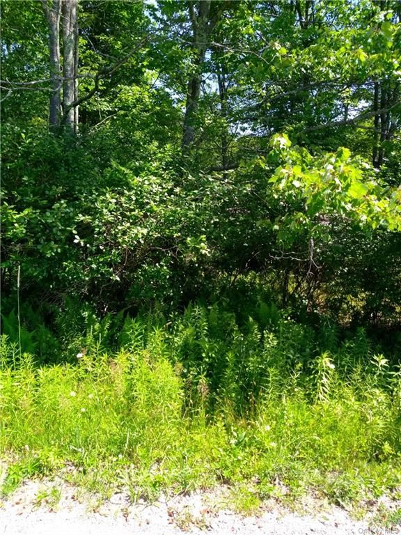 Photo for Durr Road, Jeffersonville, NY 12748 (MLS # H6050765)